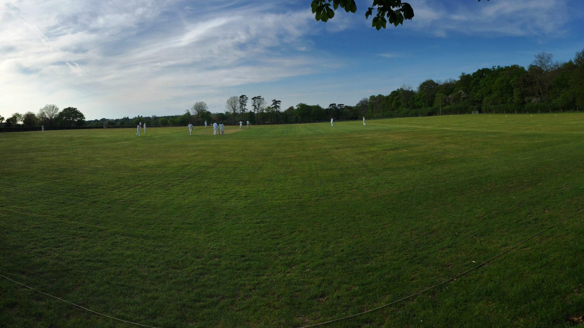 Mynthurst Cricket Club